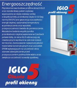 Drutex Iglo